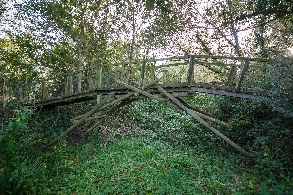Ponte di legno nel Parco Aiguamolls de l'Empordà