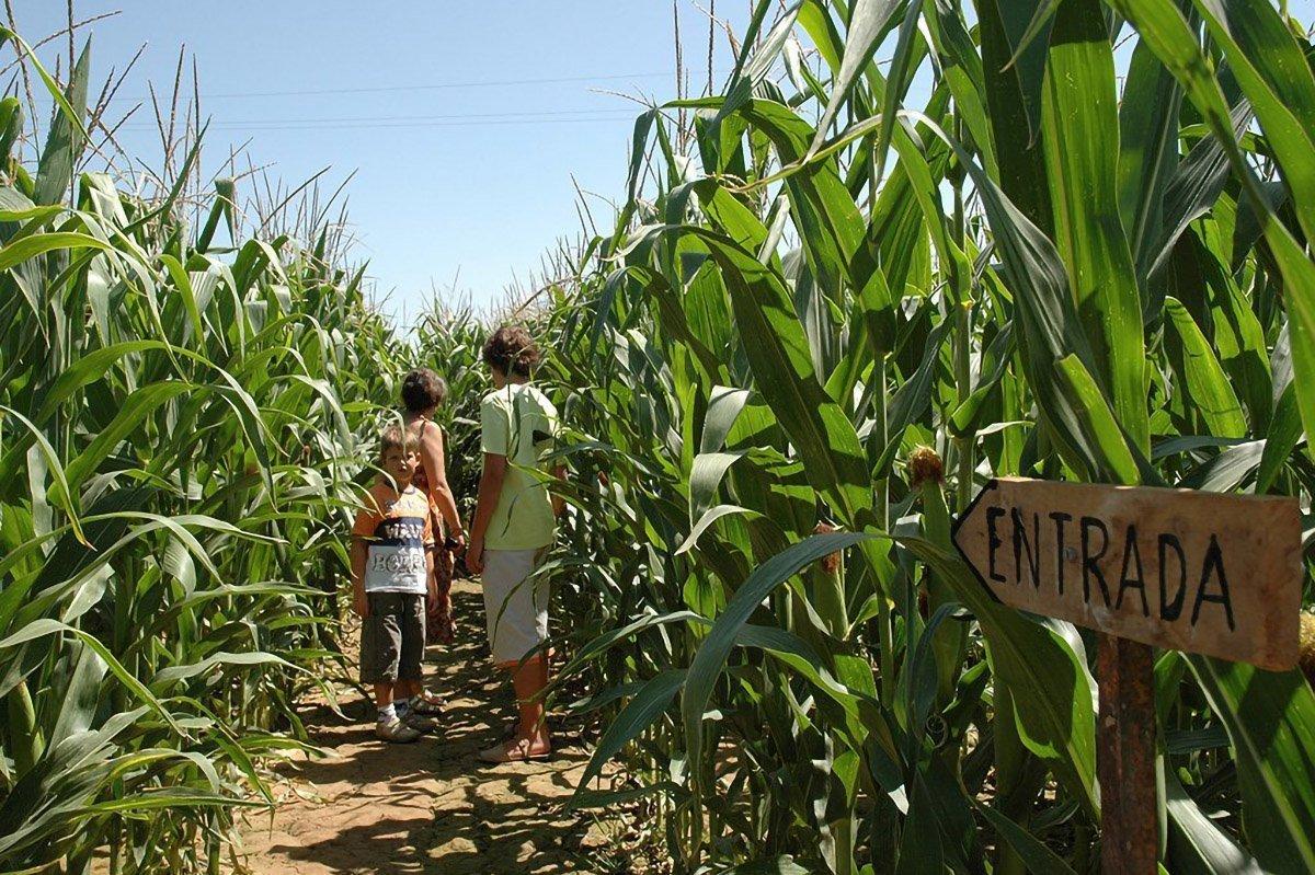 Bambini nel labirinto del grano, Pirenei catalani