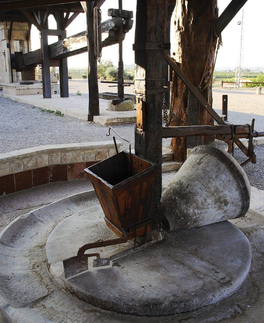 Parco dell'olio frantoio