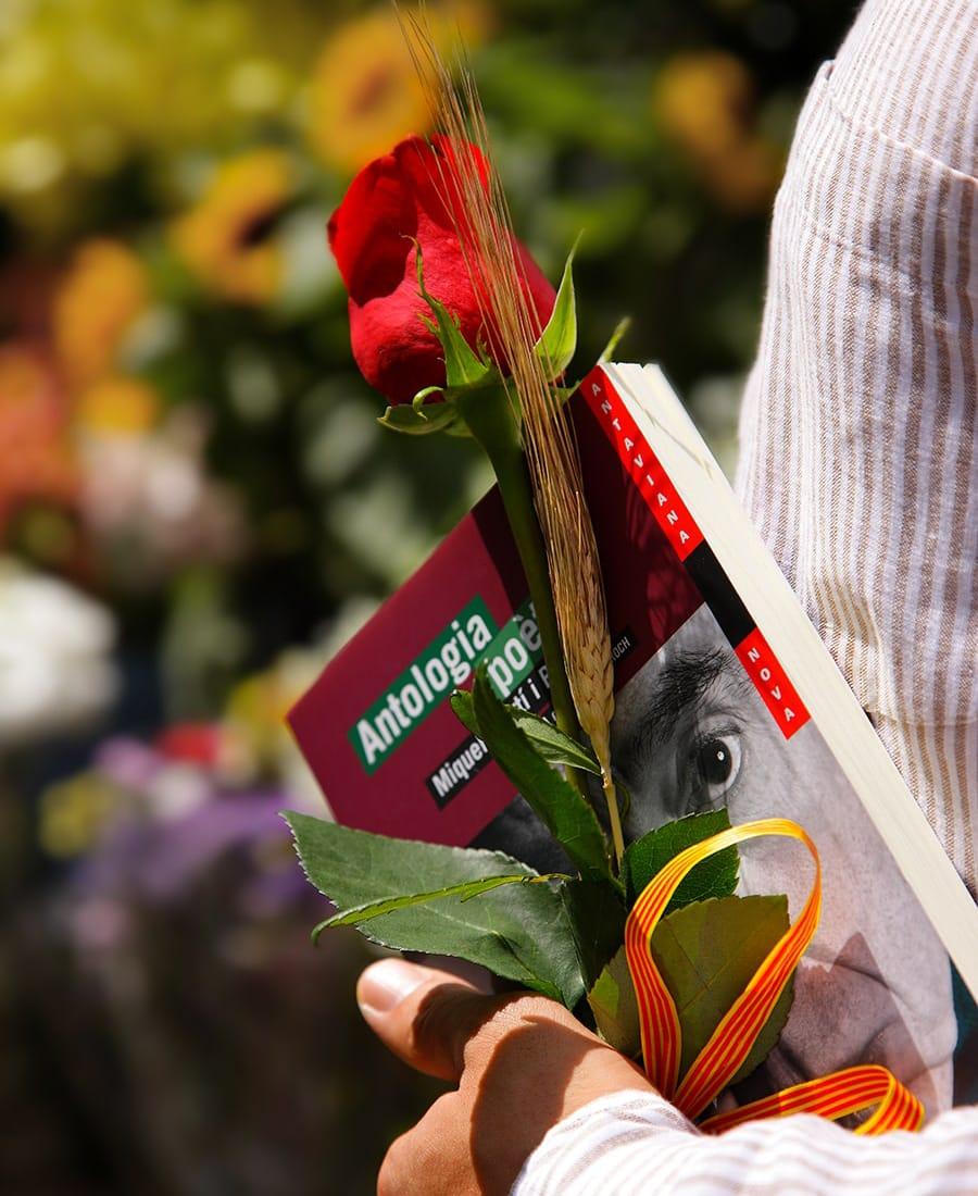 Sant Jordi doni libro e rosa