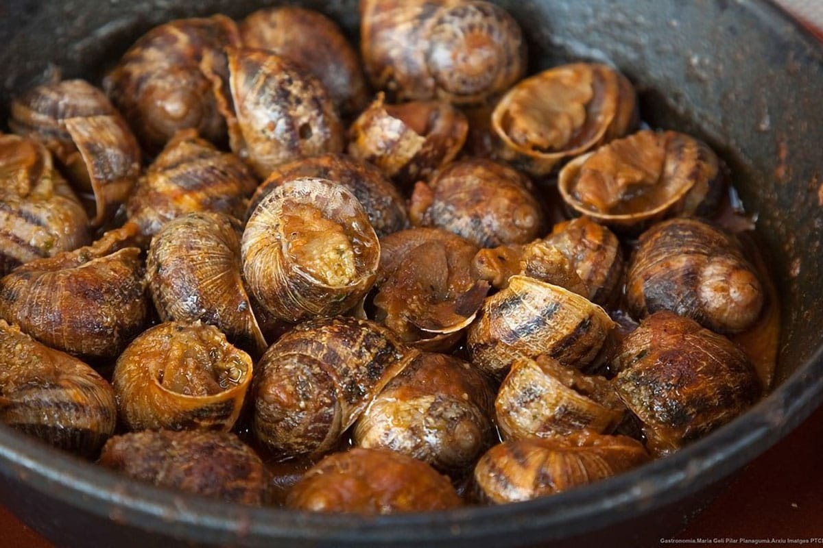Caracoles piatto catalano lumache