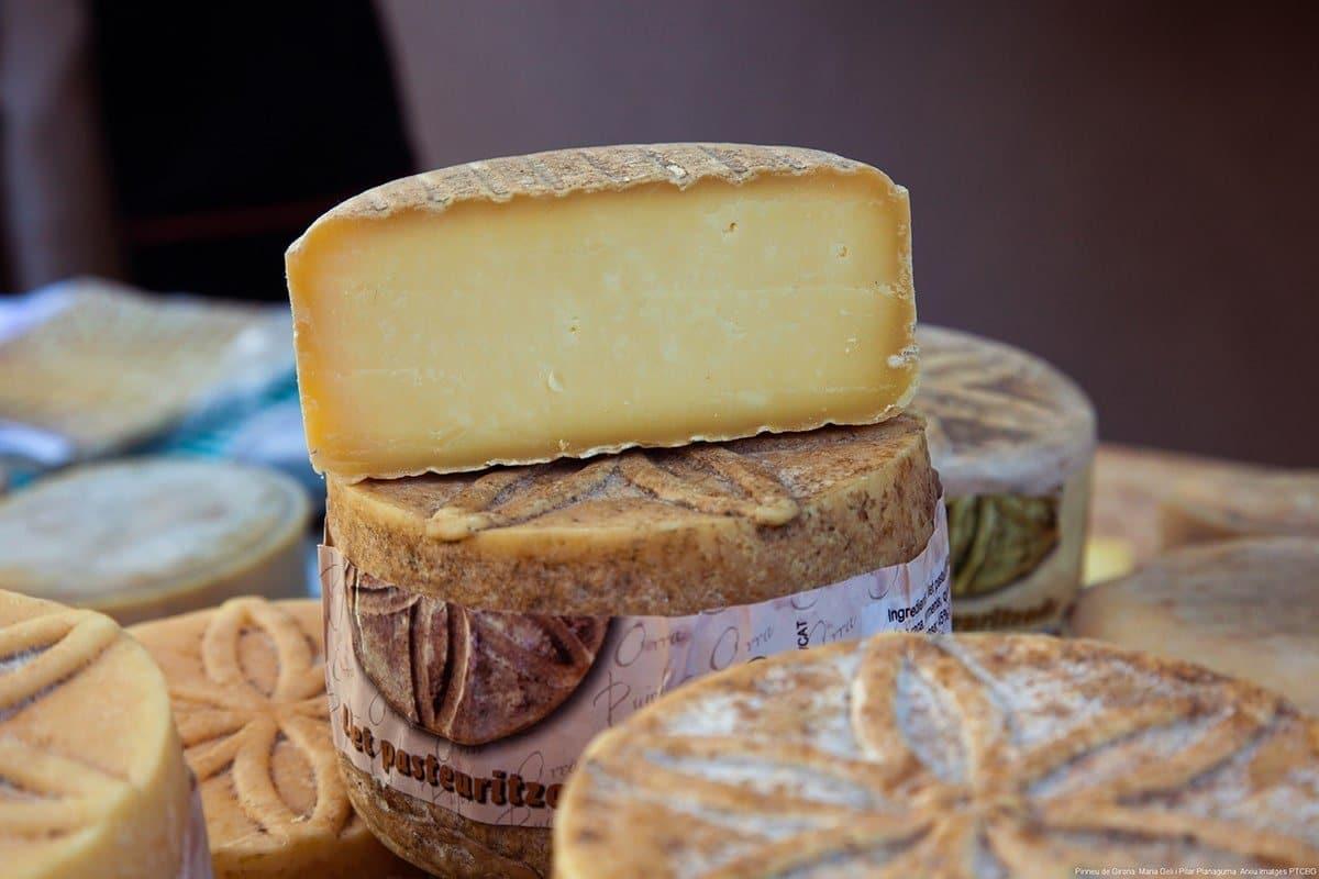 Viaggio gastronomico: formaggi catalani