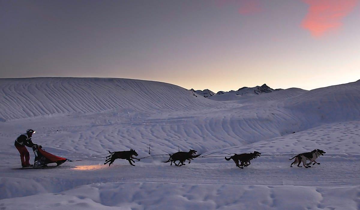 Val d' Aran slitta cani