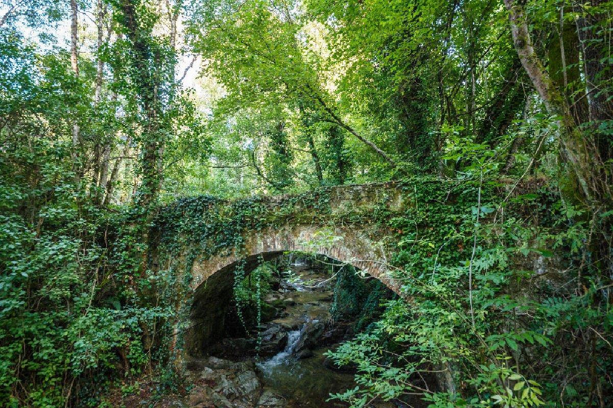 Antico ponte tra i boschi di Viladrau