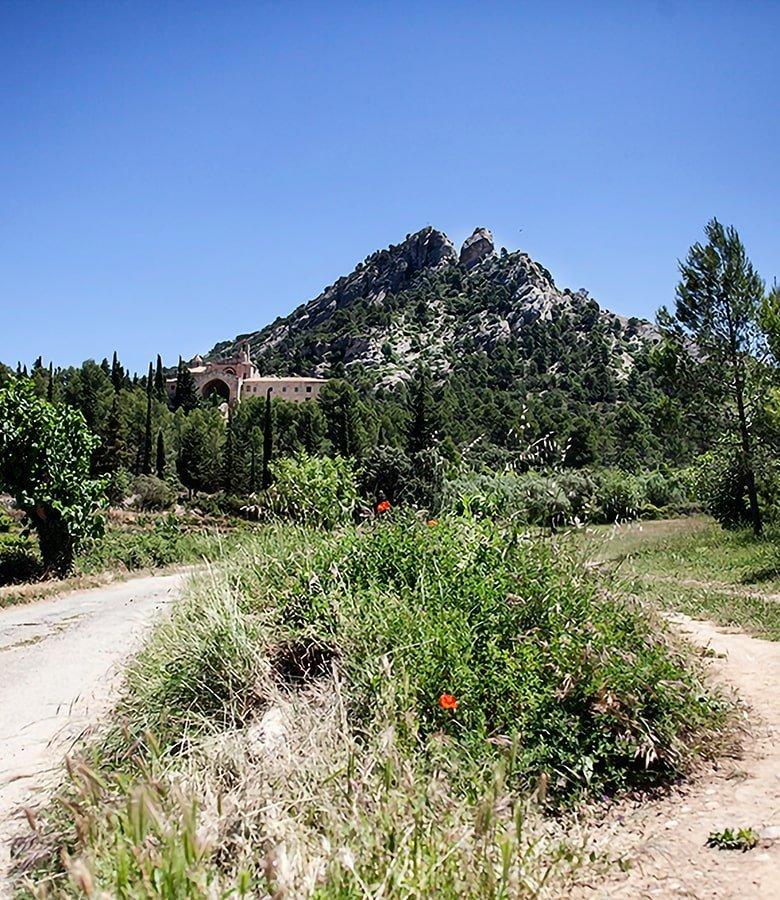 Natura nel sud della Catalunya