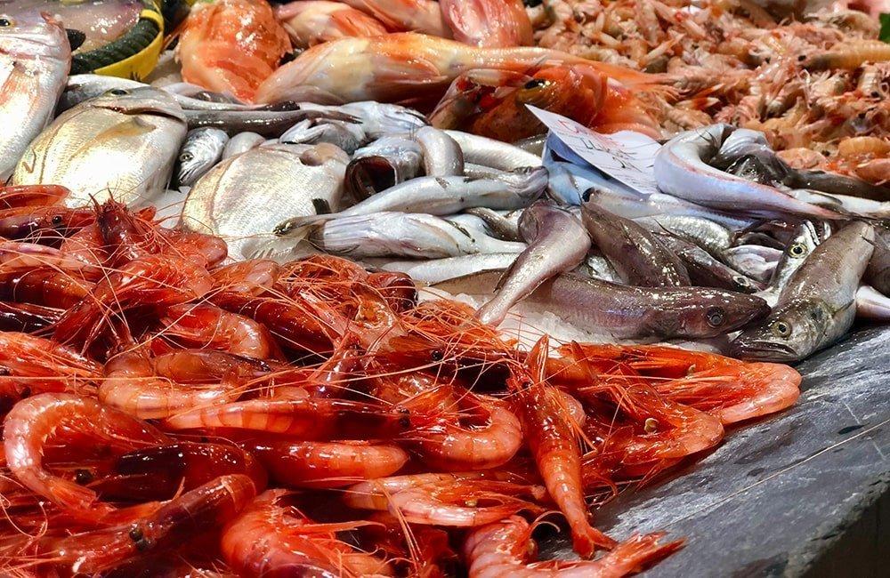 Pesce e gamberi, Palamós