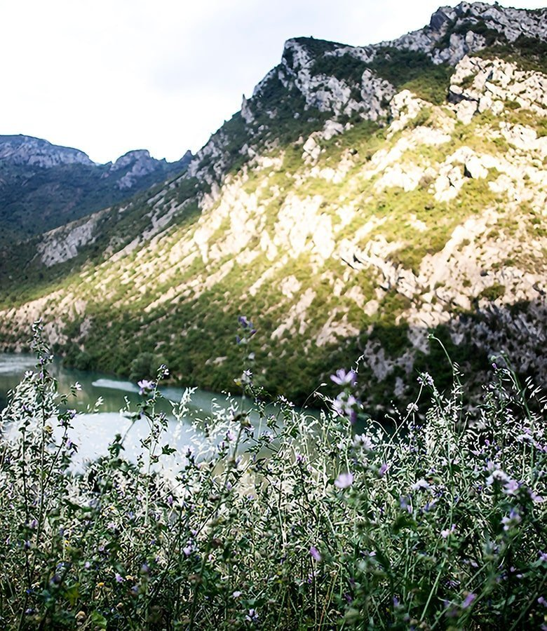 Catalunya on the road: vista sui Pireneu