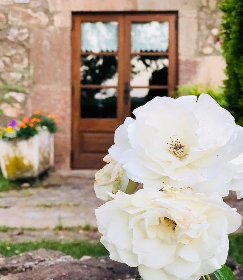 Vall d'En Bas, fiori