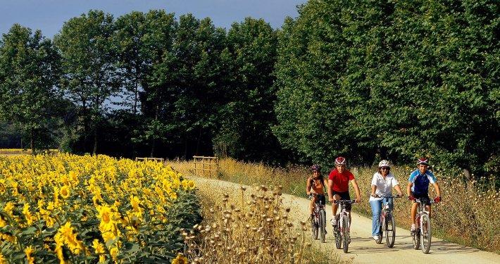 Vie verdi bicicletta