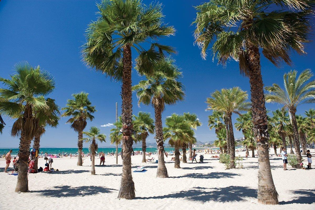 Costa catalana, spiaggia e palme a Salou