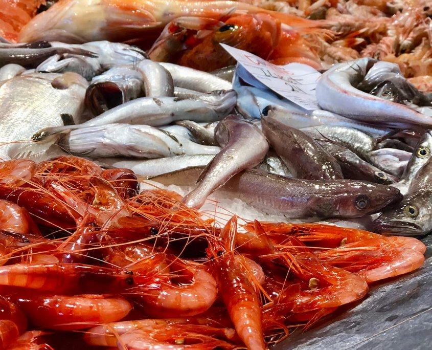 Asta del pesce di Palamós
